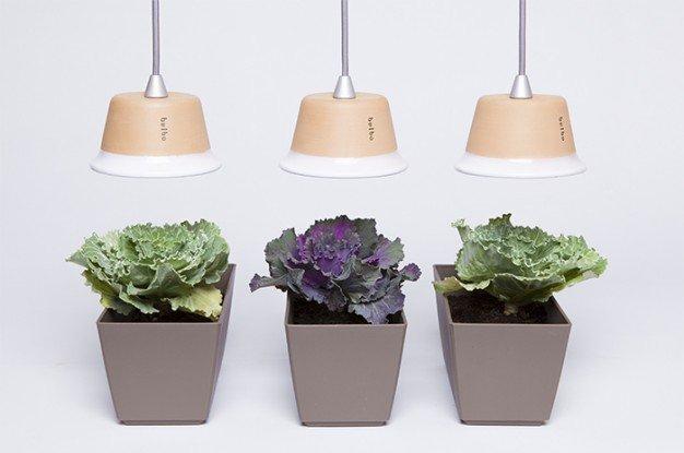 Lampada In Cartone 01lamp : Quadra la lampada di design per far crescere le vostre